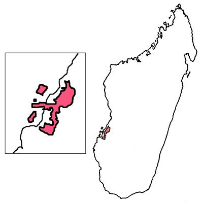 map2 copy