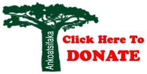 ankoatsifaka donate baobob