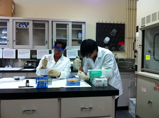 Nadira and Michael practicing pipetting using single and multichannel pipettes.